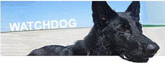 Logo Watchdog